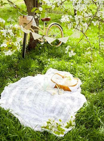 cartabia_picnic.png